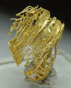 queen claifas gold