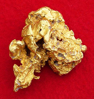 Amazing Cultures: CALIFORNIA GOLD RUSH